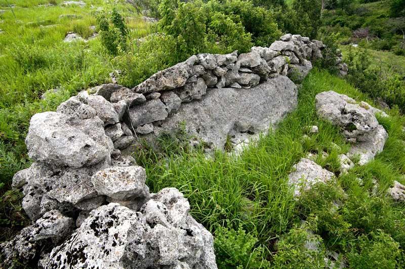 Stones amongst prairie grass in the Flint Hills