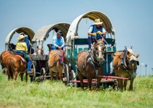 Covered wagon rides at the Signature Event