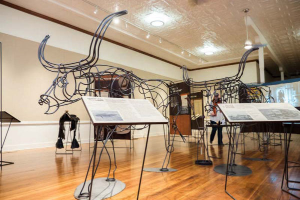 The Chisholm Trail: Driving the American West steer sculptures