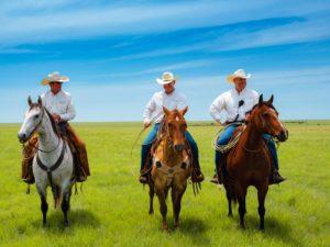 Three cowboys on horses in the Flint Hills