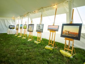 Art display in tent